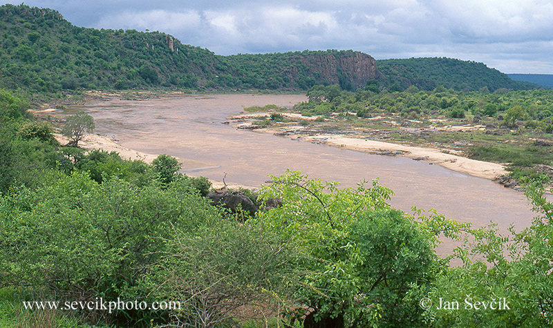 Photo of Olifants River Kruger NP South Africa