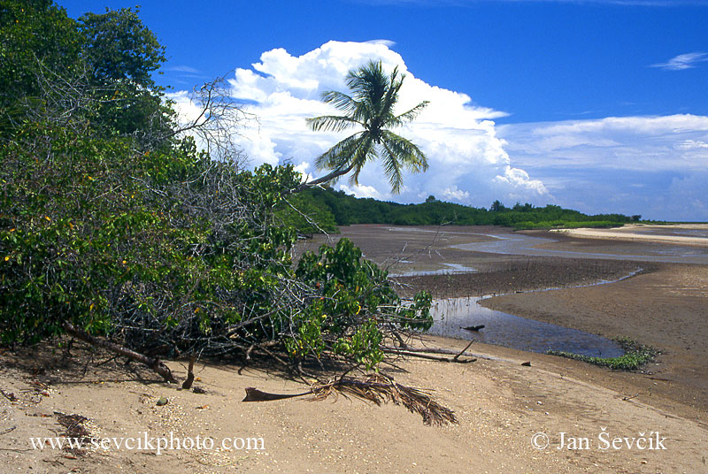 Photo of pobřeží coast Venezuela Peninsula de Paria