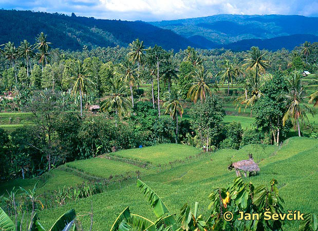 Photo of severni Bali, nord of Bali.
