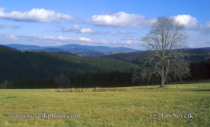 Photo of Šumava Mountains Gebirge Nature Park