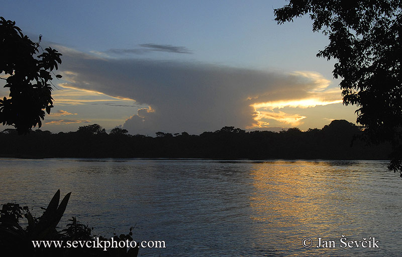 Photo of Tortuguero National Park Costa Rica